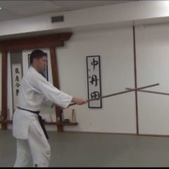 The 6 Jo Kata – basic