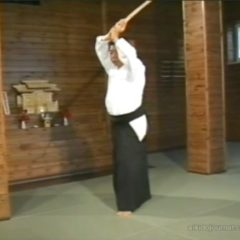 2nd Bokken Suburi